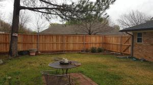 Fences2